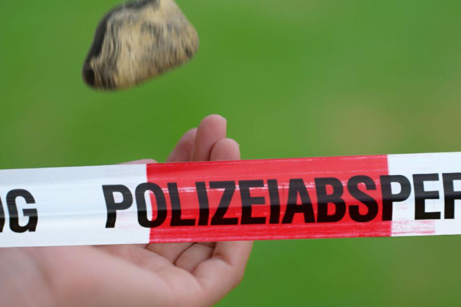 In Eilenburg haben Kinder einen Stein auf ein vorbeifahrendes Auto geworfen. Glücklicherweise wurde niemand verletzt. (Symbolbild)