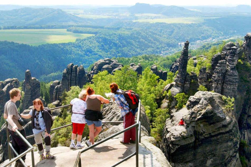 Ein 63-Jähriger ist beim Wandern in der Sächsischen Schweiz verunglückt.