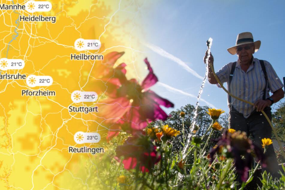 Heiß, heißer... Die Temperaturen im Ländle steigen weiter
