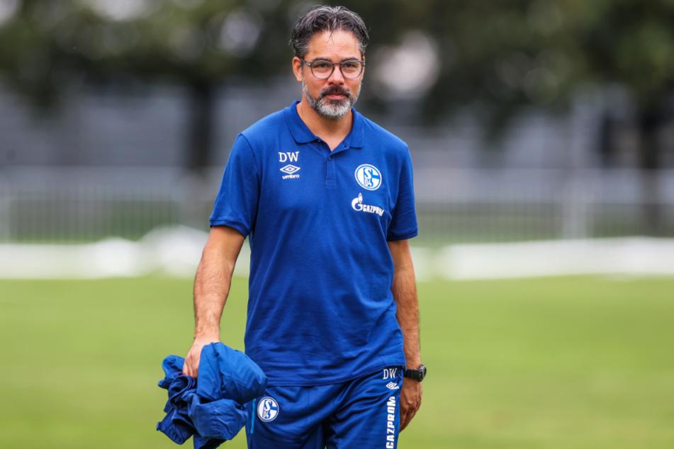 S04-Coach David Wagner sitzt trotz sportlich furchtbarer Rückrunde auf Schalke weiter fest im Sattel.