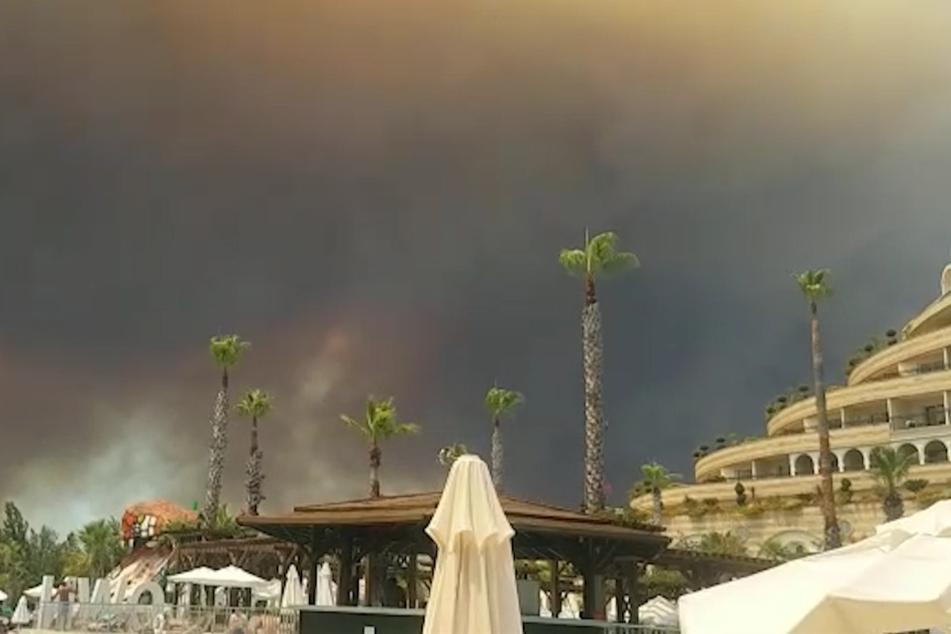 Mehrere Brände in beliebter Urlaubsregion ausgebrochen