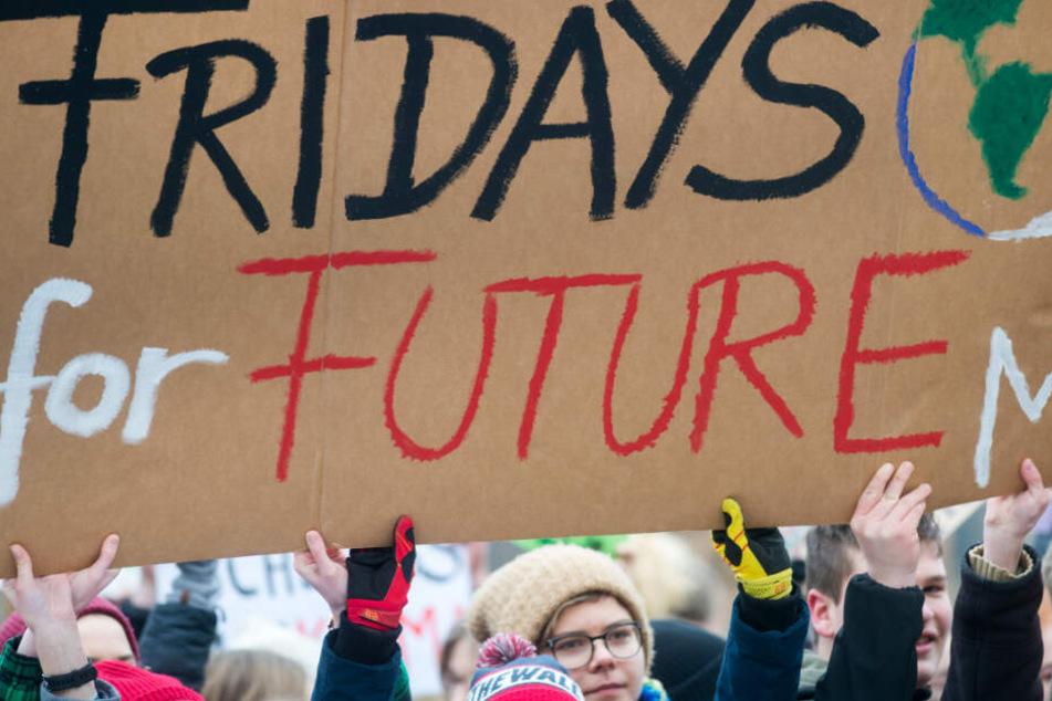 """""""Fridays for Future"""" ist auf dem Schild mehrerer Schüler zu lesen."""