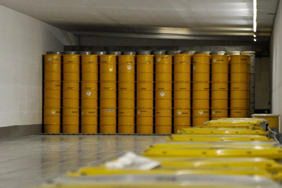 In Gorleben werden derzeit 1309 Fässer mit Atommüll zwischengelagert.