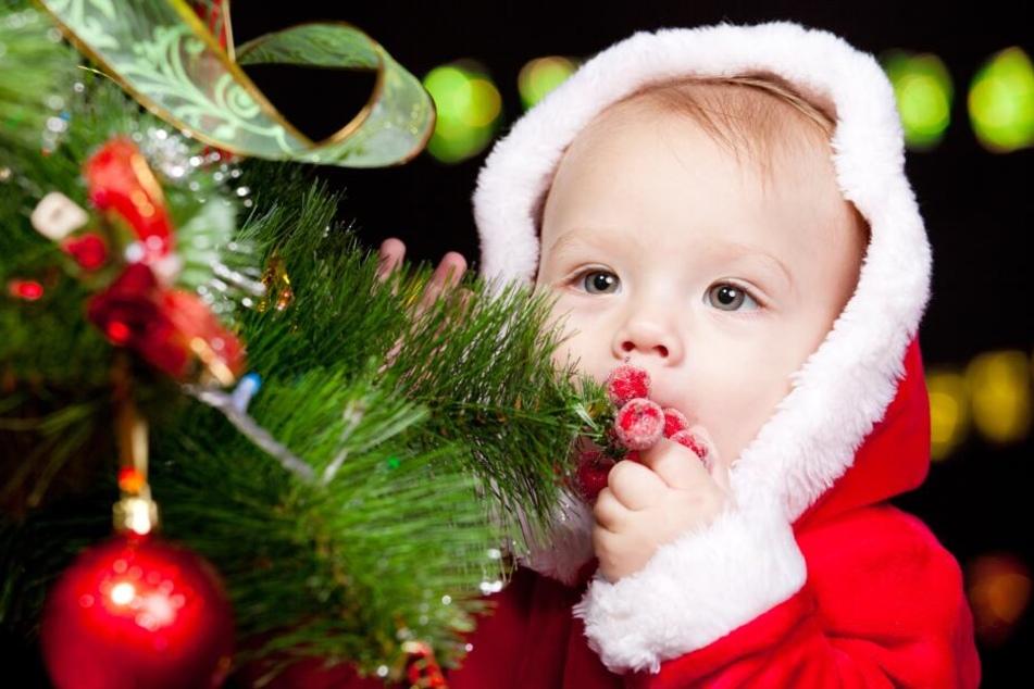 So viele Weihnachts-Babys gibt es in NRW