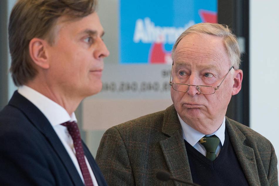 Bernd Baumann und Alexander Gauland können mit den letzten Umfragewerten nur zufrieden sein.