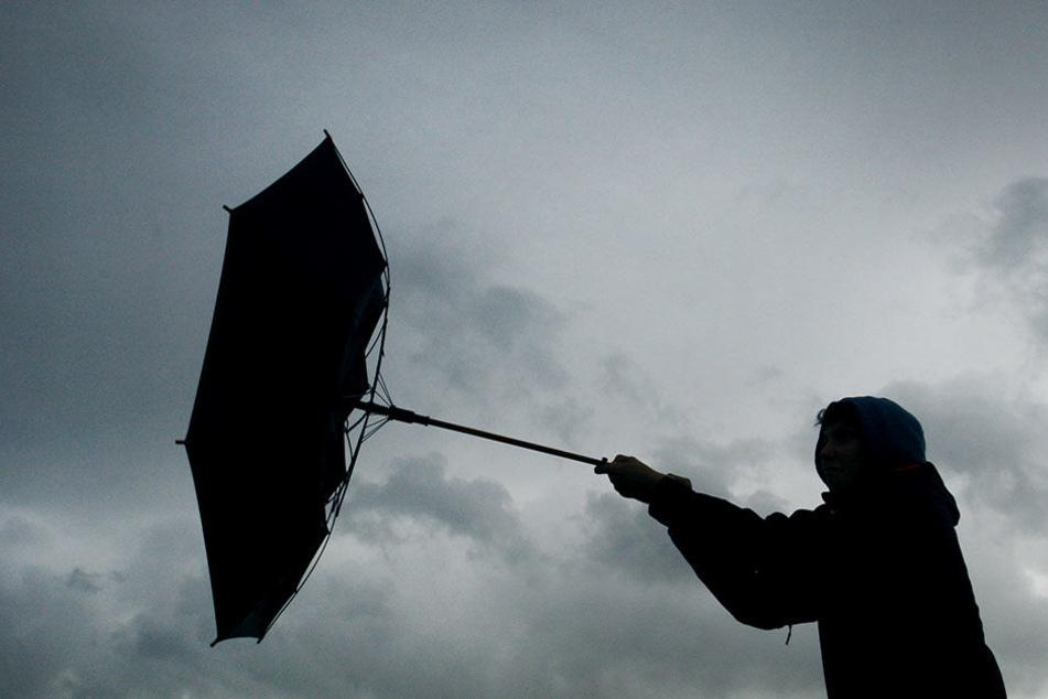 In Berlin und Brandenburg wird es nass und windig.