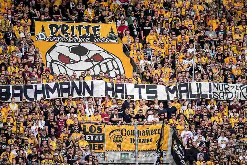 Eine Botschaft von Dynamo-Fans an PEGIDA-Chef Lutz Bachmann, während des Zweitliga-Spiels gegen Arminia Bielefeld (21. Mai 2017).