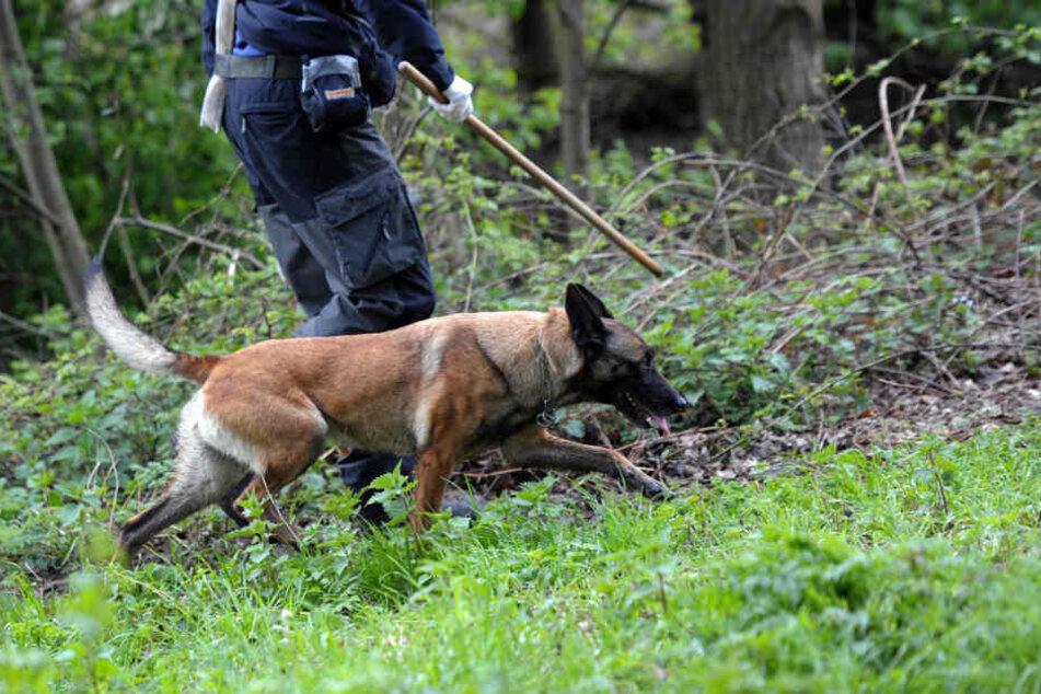 Mit Leichenspürhunden wurde bereits nach dem Vermissten gesucht. In einer Scheune fand man ihn - tot! (Symbolbild)