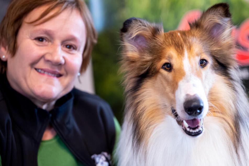 Renate Hiltl vermittelt über die Film-Tier-Ranch nicht nur Hunde.