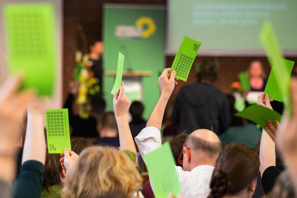 Die Grünen stimmen am Samstag über ihren neuen Landesvorsitz in Hamburg ab.