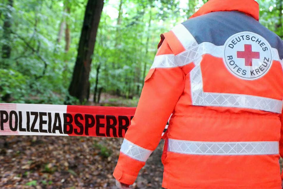 Das Flugzeug stürzte in einen Wald neben der Startbahn (Symbolbild).
