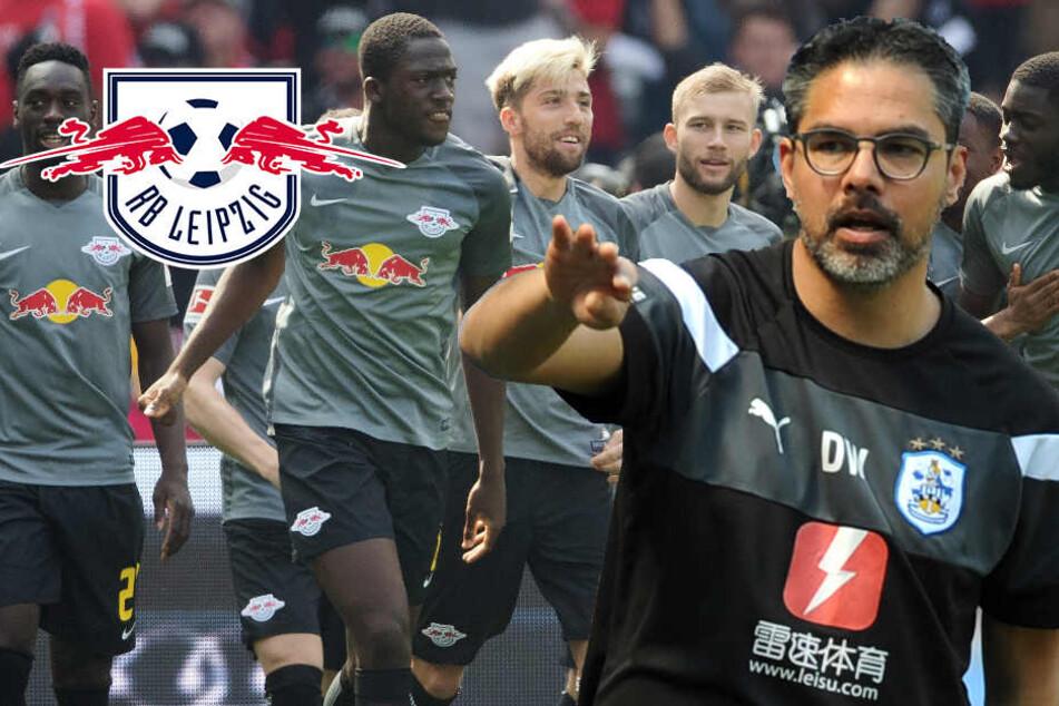 David gegen Goliath? Huddersfield misst sich mit RB Leipzig im Test