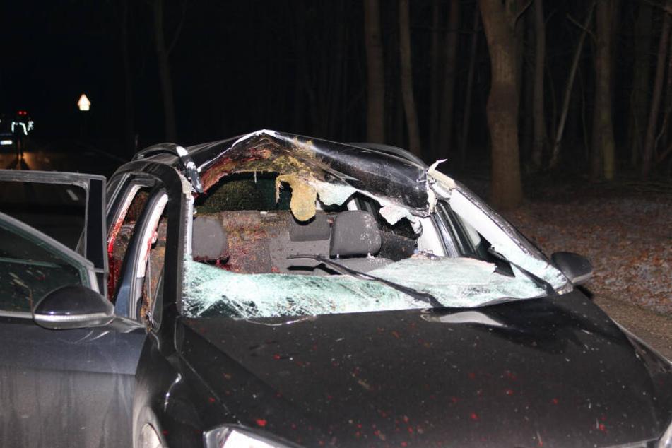 Gegen 20.50 Uhr erfasste der Fahrer eines VW Golf ein Reh und schleuderte es in den Gegenverkehr.