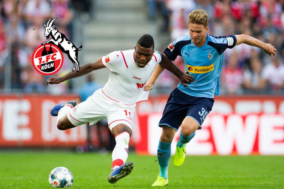 Mönchengladbach gegen 1. FC Köln: Rheinisches Derby wegen Sturmtiefs abgesagt!