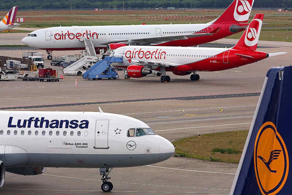 Lufthansa gilt als bester Kandidat für die Übernahme der insolventen Air Berlin.