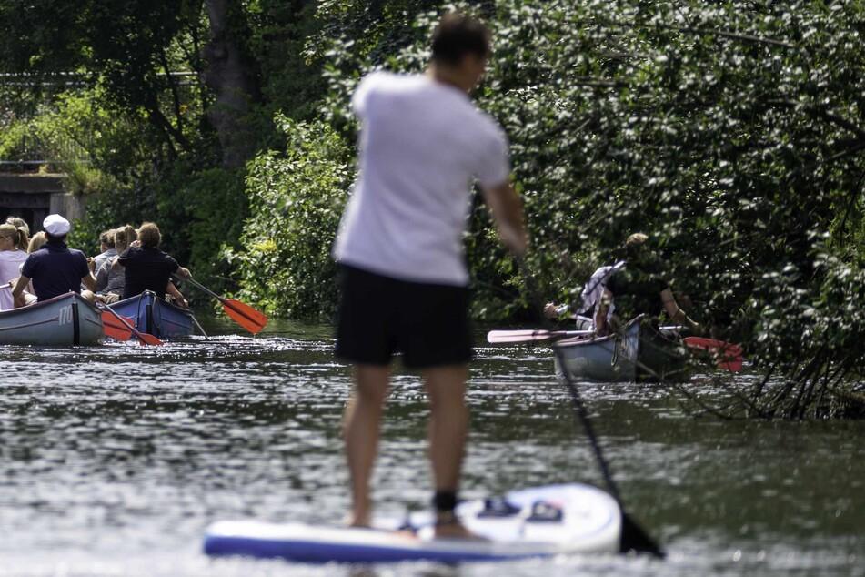 Freizeitsportler in Ruderbooten und auf einem Stand-Up-Board sind auf einem Alsterkanal unterwegs. Das sorgt zunehmend für Probleme.