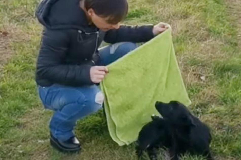 Ermioni musste sich eines Handtuchs behelfen, um den Hund mitnehmen zu können.