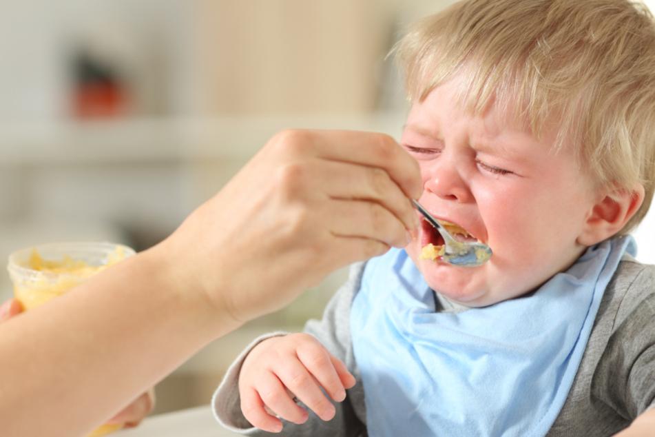 Krasse Unterschiede bei Kindernahrung: Ein Produkt hat 14-mal so viel Fett wie ein anderes