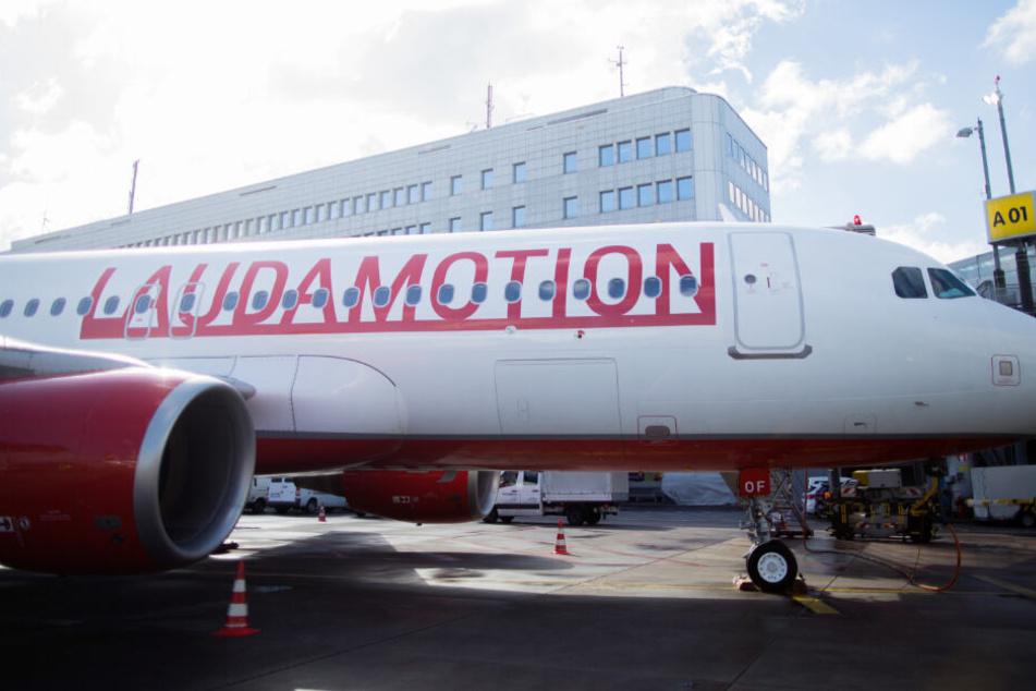 Ab Juni fliegt Laudamotion dreimal wöchentlich von Rostock-Laage nach Mallorca.