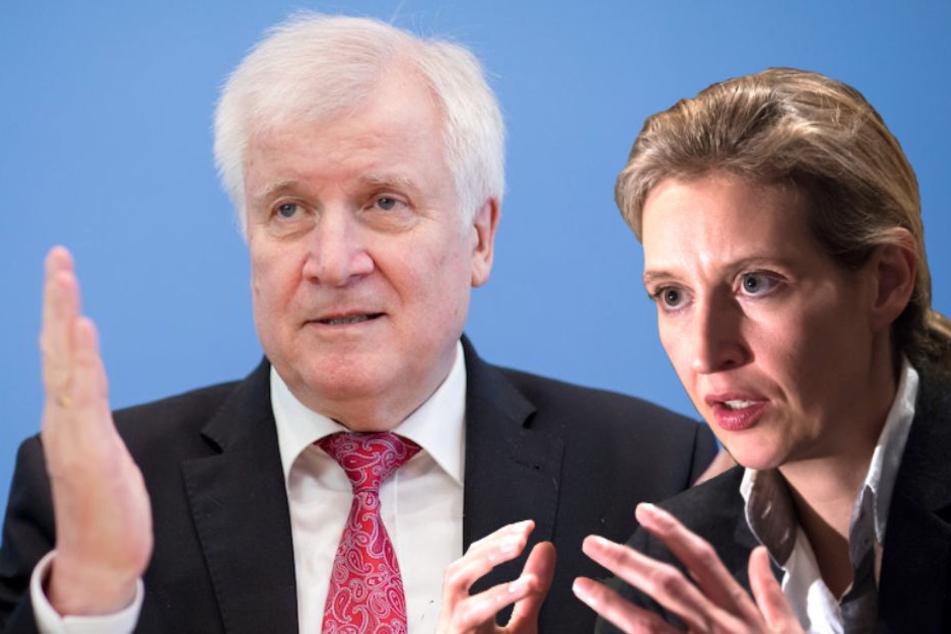 AfD-Chefin Alice Weidel (39) verteidigt Horst Seehofer (69, CSU). (Bildmontage)