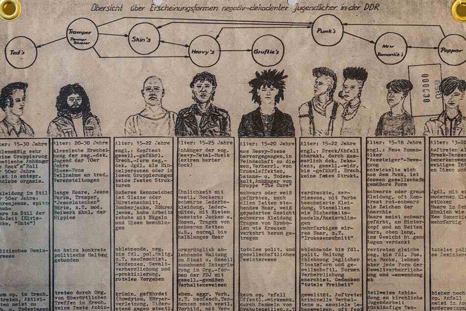 """Das ist kein Schülergekrakel, sondern allen Ernstes die originale Unterscheidungs-Kartei """"negativ-dekadenter Jugendlicher in der DDR"""" des Ministeriums für Staatssicherheit."""