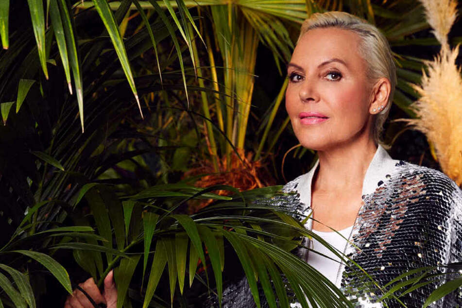 Natascha Ochsenknecht stellt sich im Dschungel mehreren Gefahren und anderen Promis.