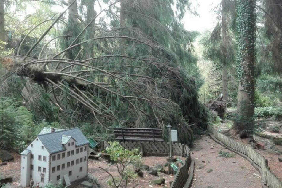 Umgestürzte Bäume fielen auf die Modelle im Klein Erzgebirge.