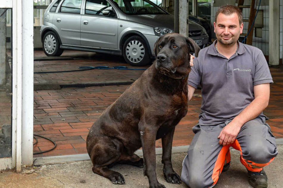 Automechaniker Enrico Petzold (38) wurde von Einbrechern heimgesucht.