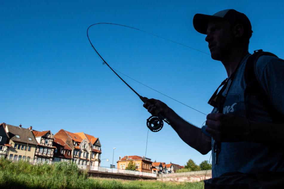 Angler aufgepasst! Mit Gift verseuchte Fische schwimmen in unseren Flüssen