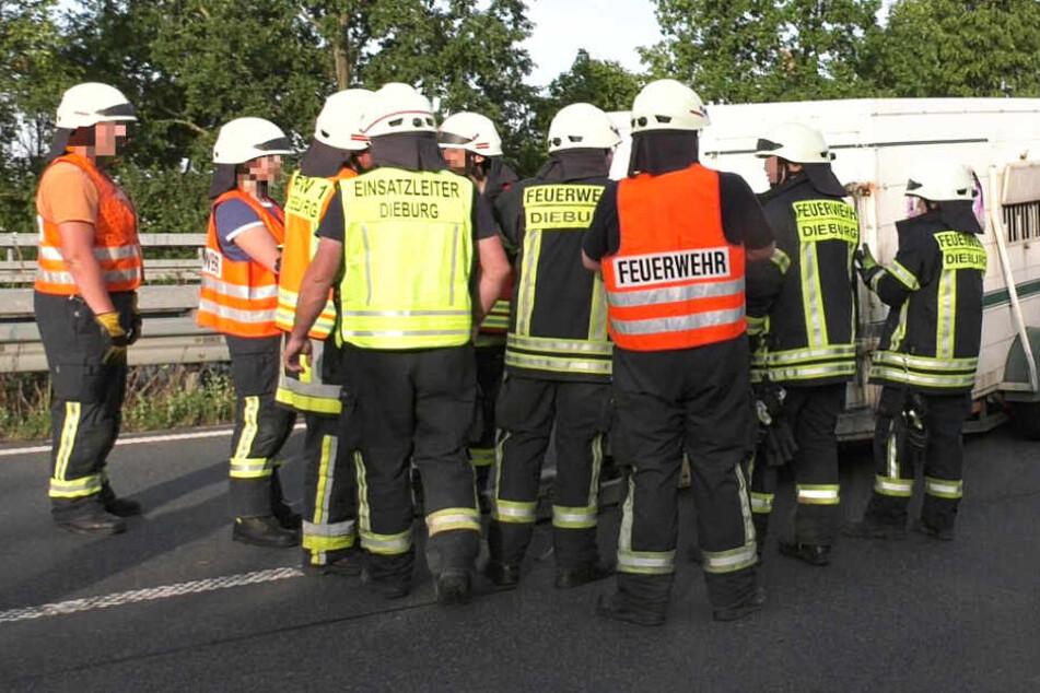 Zahlreiche Einsatzkräfte der Feuerwehr Dieburg waren vor Ort.