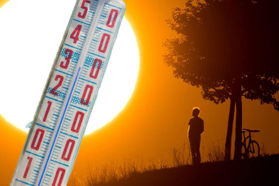 Die Temperaturen können im Freistaat auf über 30 Grad steigen.