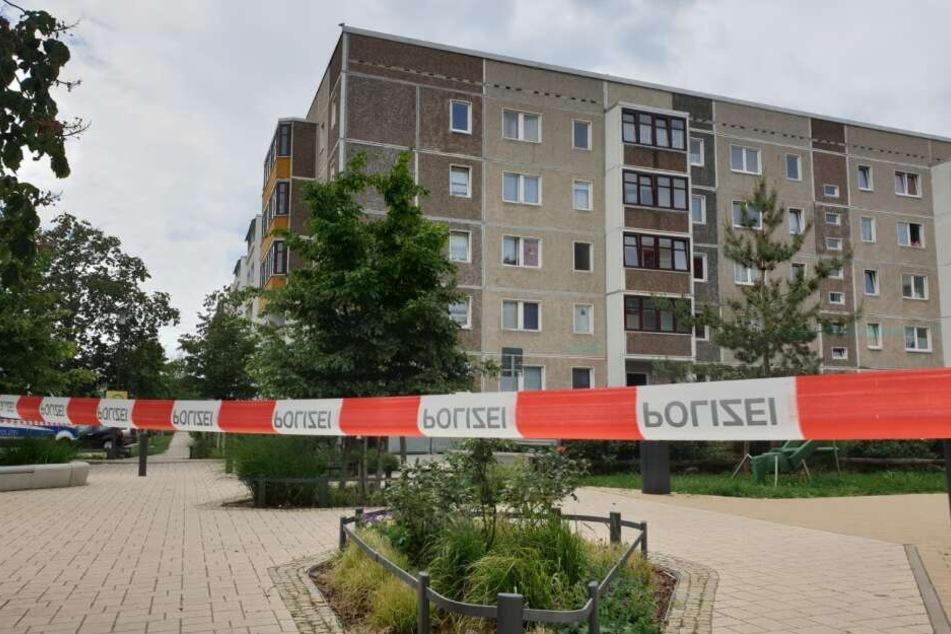 Mädchen (7) verschleppt und in Wohnung missbraucht: Peiniger Willi D. gesteht Gräueltat