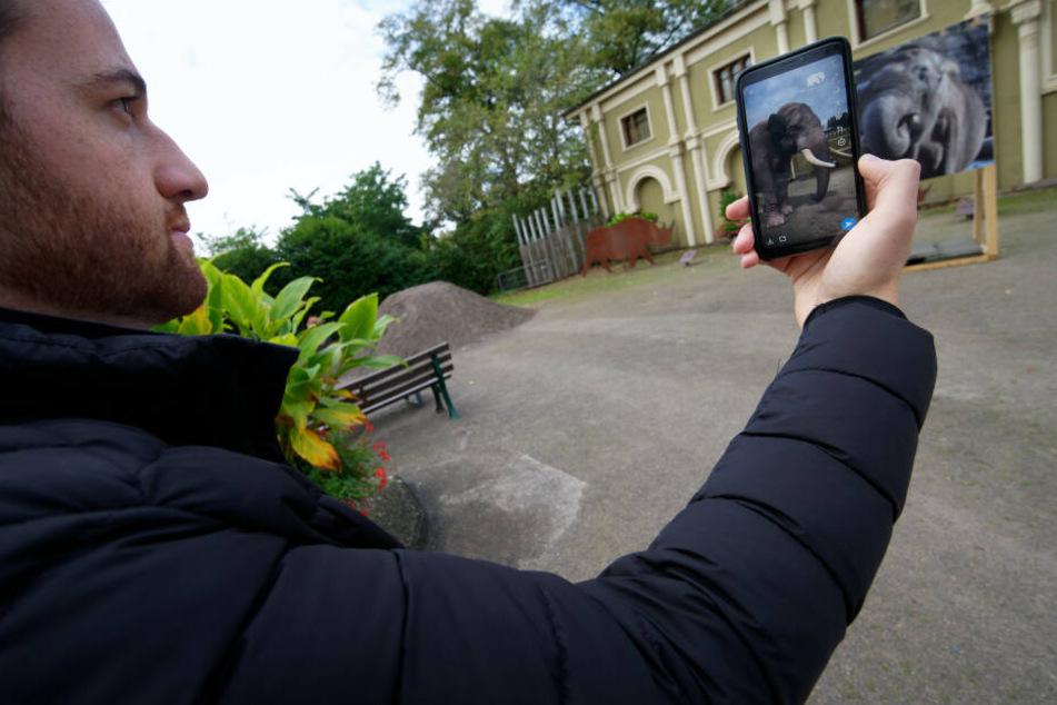 Ein Nutzer testet die Snapchat-Funktion im Kölner Zoo.