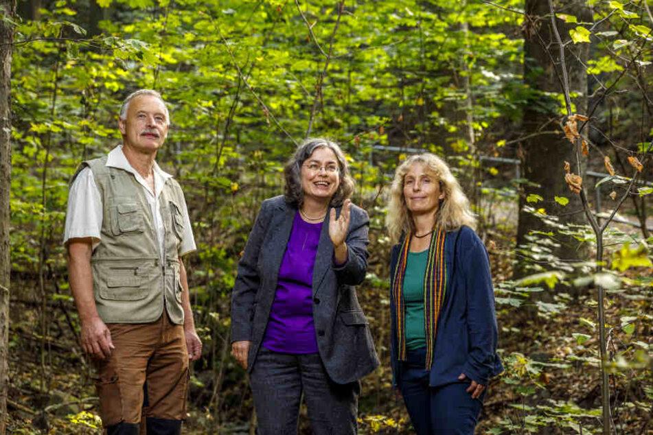 Hier soll ein Urwald wachsen: Umweltbürgermeisterin Eva Jähnigen (52, Grüne), Stadtwaldförster Förster Thomas Hensel (60) und Umweltamt-Sachbearbeiterin Petra Kirchhoff (54) freut's.