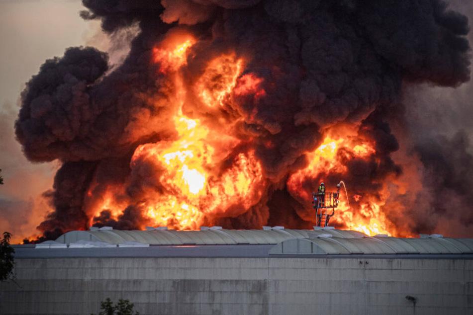 Flammen schlagen aus der Halle.