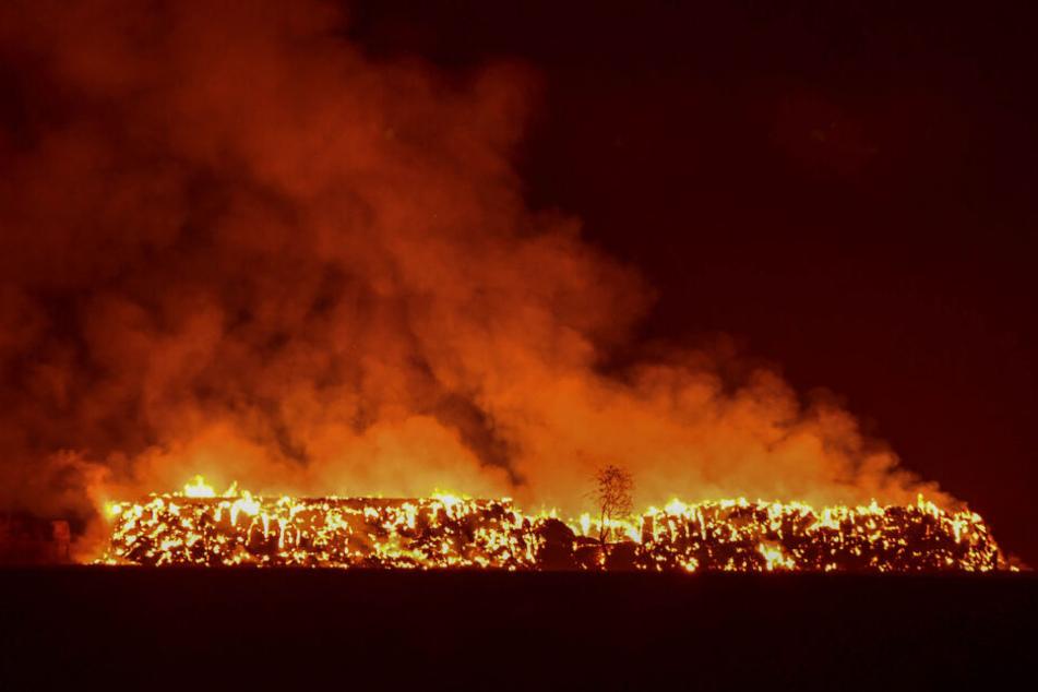 Etwa 1500 Strohballen gingen in Flammen auf.