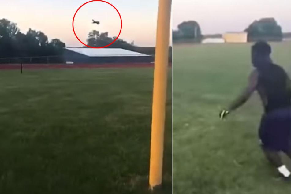 Brutal! Katzenbaby wird getreten und fliegt 20 Meter durch die Luft