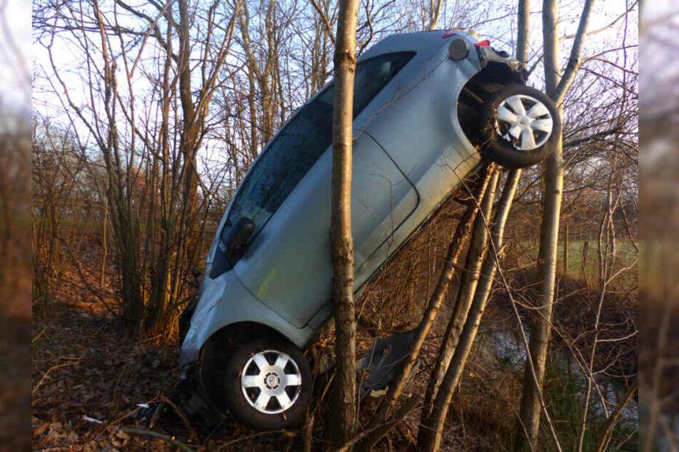 Das Auto hing zwischen den Bäumen fest.