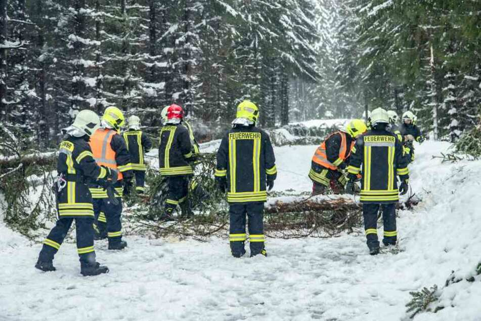 Die Feuerwehr ist im Dauereinsatz, sichert Bäume und räumt Straßen frei.