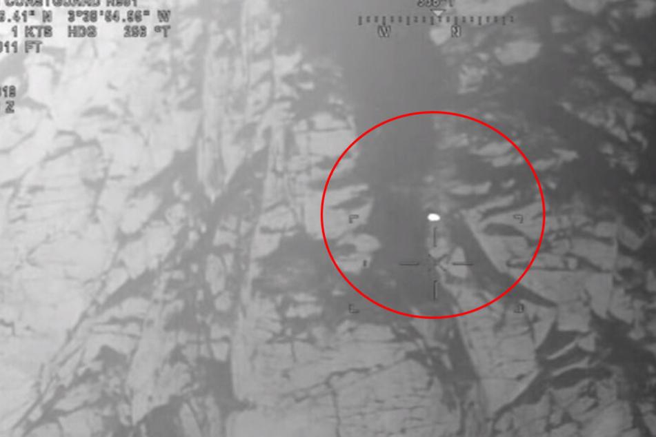 Die Wärmebildkamera erfasste das Tier auf dem Berg.
