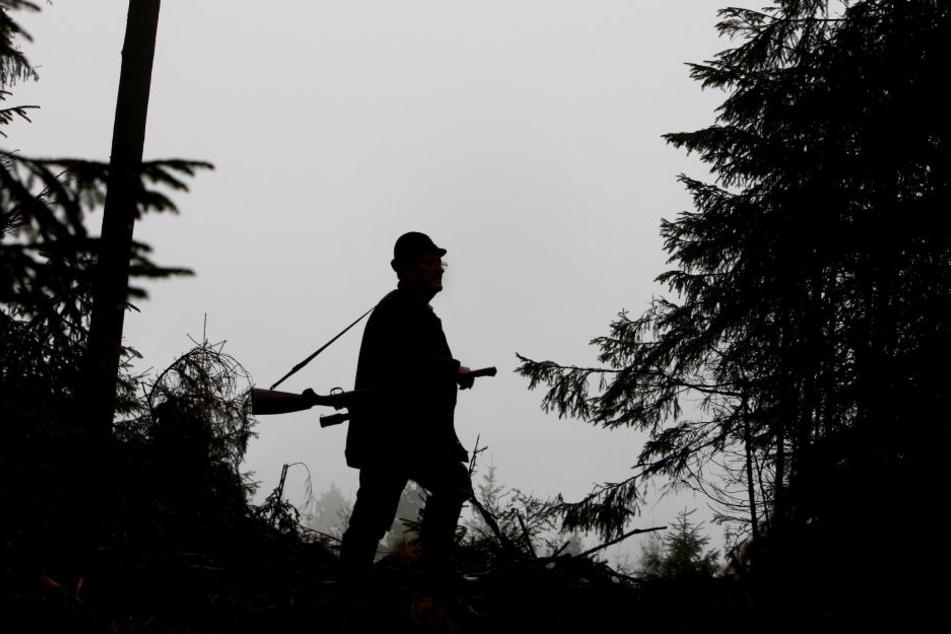 Jagdwilderei kann mit einer Freiheitsstrafe bis zu drei Jahren oder mit einer Geldstrafe geahndet werden (Symbolbild).