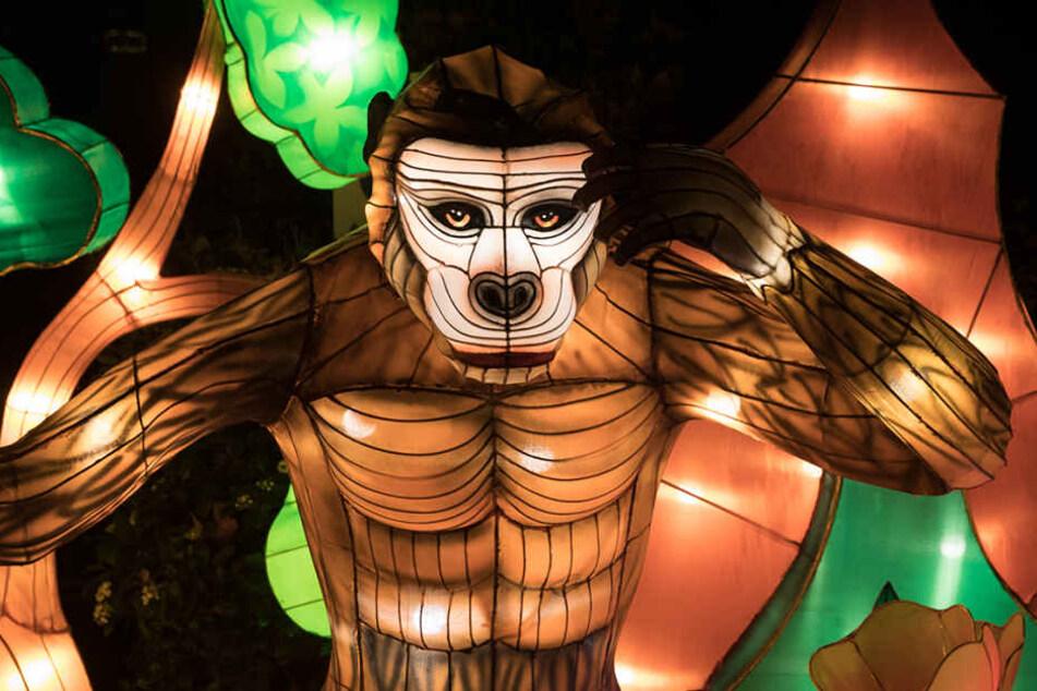 Eine der Leuchtfiguren anlässlich des China Light-Festivals im Kölner Zoo.