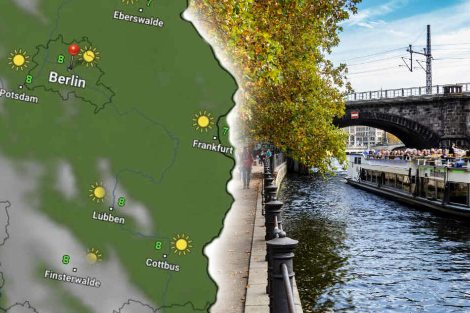 Bodenfrost und Sonnenschein? So wird das Wetter in Berlin und Brandenburg