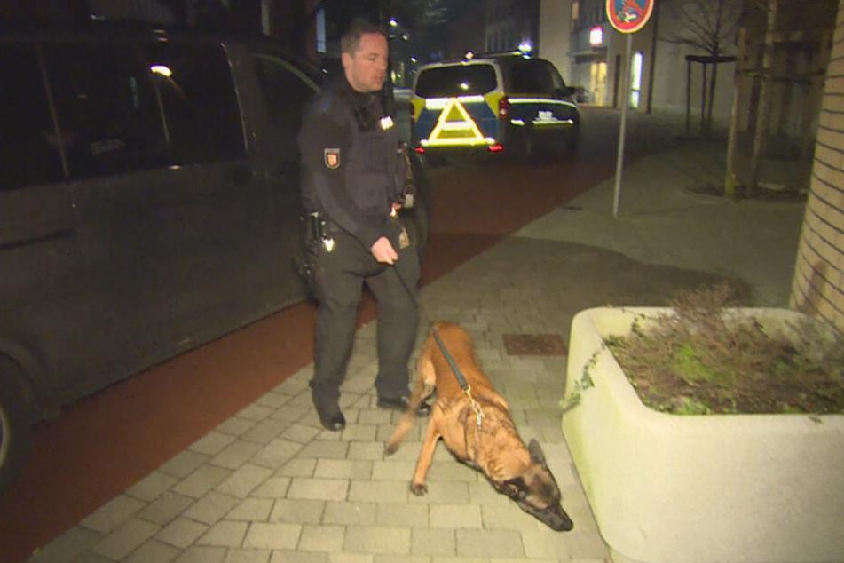 Die Polizei suchte die Umgebung mit einem Sprengstoff-Spürhund ab.