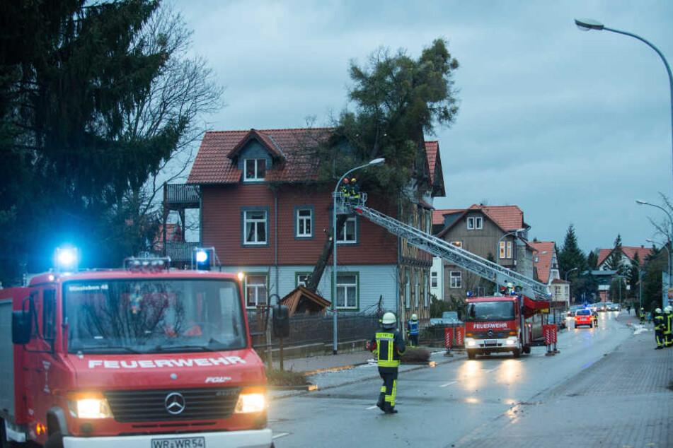 """Orkan """"Friederike"""" verwüstete auch Sachsen-Anhalt. In Benndorf und Hohnemölsen sind zwei Männer ums Leben gekommen."""