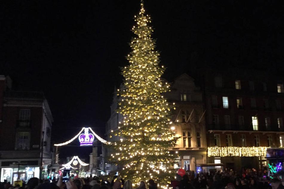 Am prachtvollen Weihnachtsbaum vor Schloss Windsor hängen auch Kugeln aus Thüringen.
