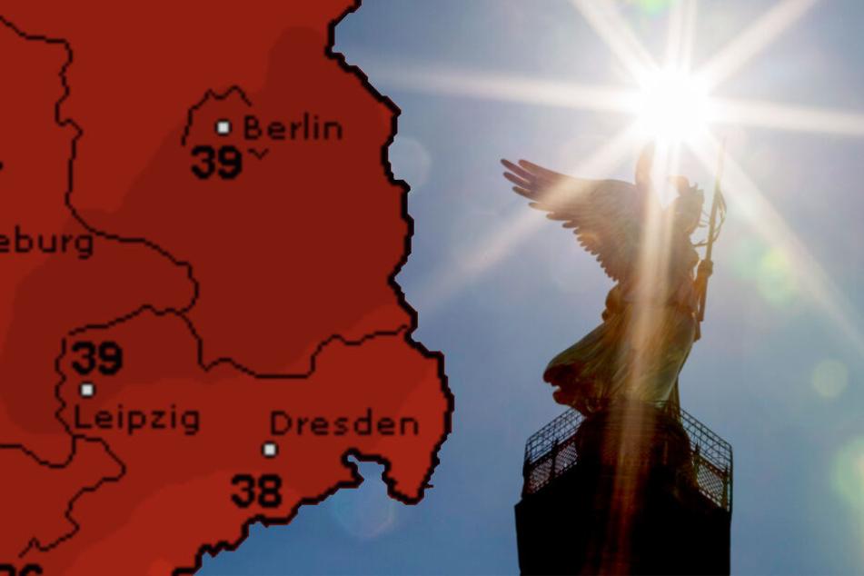 """Bis zu 39 Grad: """"Juni-Rekord-Hitze"""" lässt Berlin ordentlich schwitzen!"""