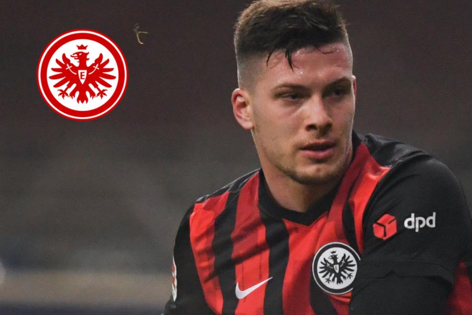 Gehen die Eintracht-Jubelwochen weiter? Startelf-Einsatz von Jovic in Freiburg fraglich