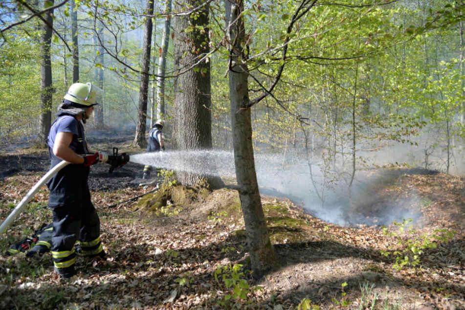 Bei 36 Waldbränden sind in diesem Jahr neun Hektar Wald vernichtet worden. (Symbolbild)