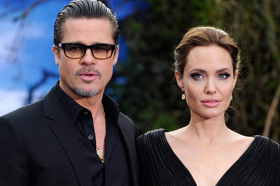 Seit zwei Jahren tobt zwischen Brad Pitt und Angelina ein Rosenkrieg.